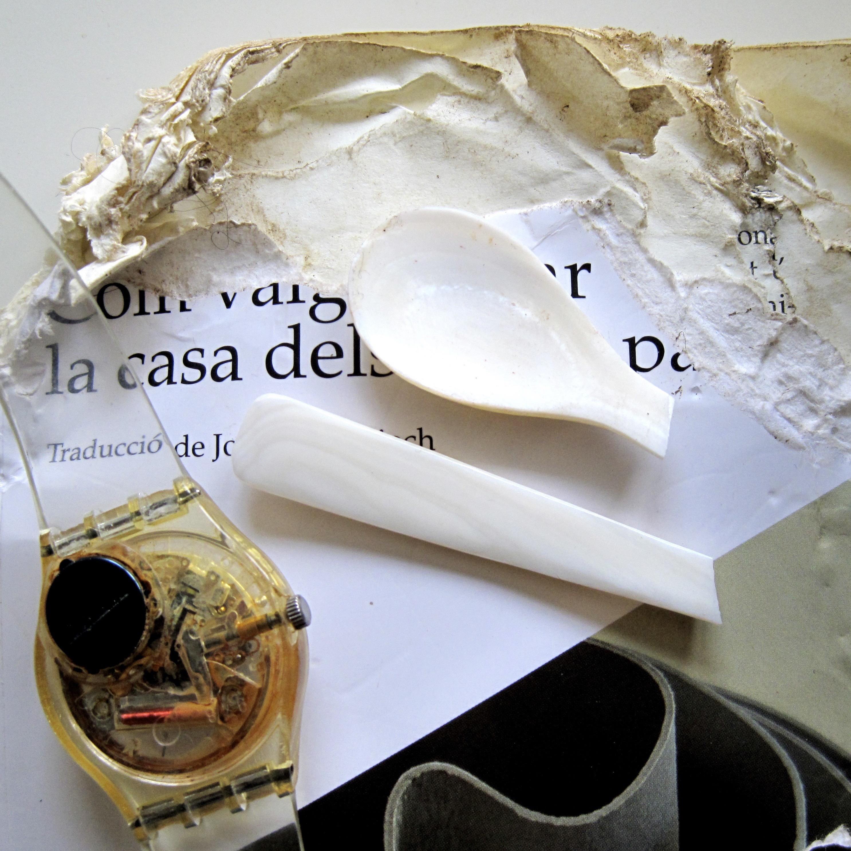 IMG_1559-Cassé,Rongé,Rouillé-27 octobre 2009-